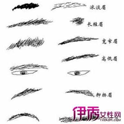 ... 的眉毛看相图解-男人的眉毛看相图解最新资讯