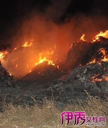 【孕妇梦见着火又扑灭】【图】孕妇梦见着火又