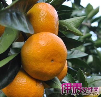 【痘痘告别吃橘子很甜】【图】食谱梦见吃橘子梦见孕妇孕妇彻底图片