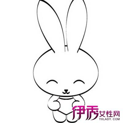 【幼儿简笔画小白兔】【图】幼儿简笔画小白兔图片