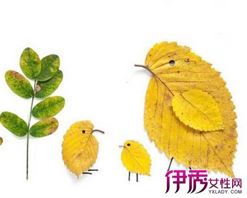 【兒童樹葉粘貼畫圖片】【圖】兒童樹葉粘貼畫圖片