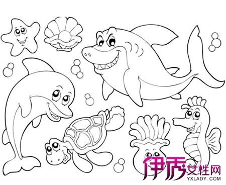 海底世界简笔画作品 第2页 画画大全