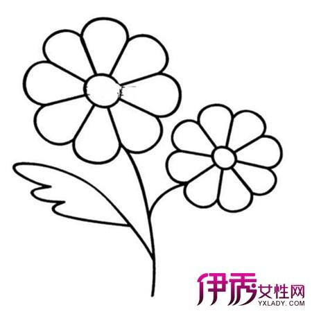 幼儿花朵简笔画欣赏 七个方法教你轻松学会简笔画