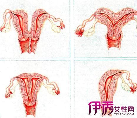 天马幻想双子宫攻略图_双子宫,对于女性来说是个