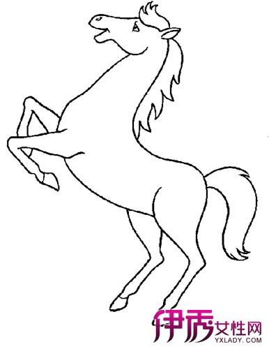 【图】可爱小马儿童画作品欣赏