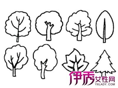 【幼儿画画图片大全树】【图】幼儿画画图片大全树图