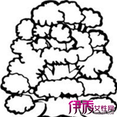 【儿童简笔画大树图片】【图】欣赏儿童简笔画大树