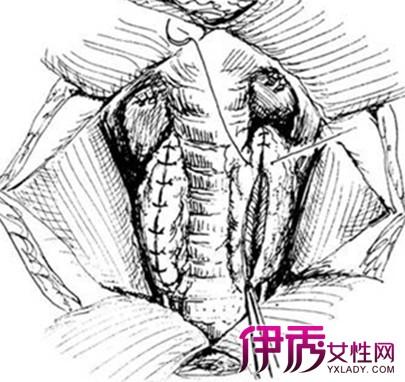 素描中国健康饮食宝塔