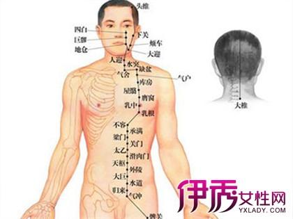 揭秘人体背部经络图 哪些经络你还不了解吗