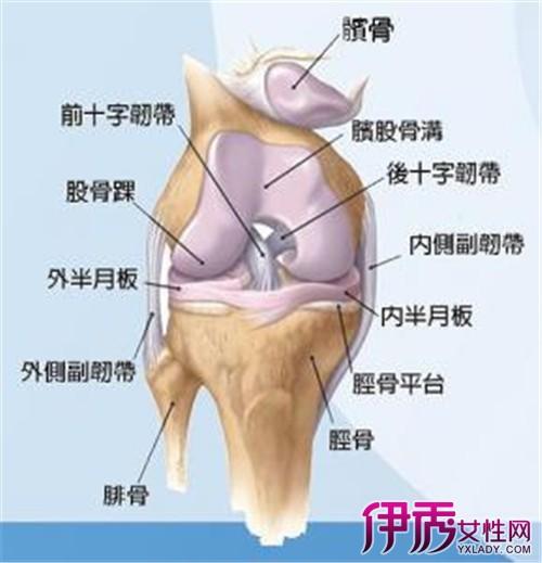 膝关节半月板损伤的原因有哪些 3种症状说明膝关节损伤