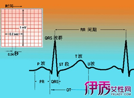 正常心电图参照 8要点教你看懂心电图