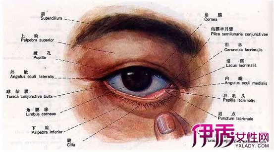 红眼病的治疗方法 7大注意事项让你避免红眼病