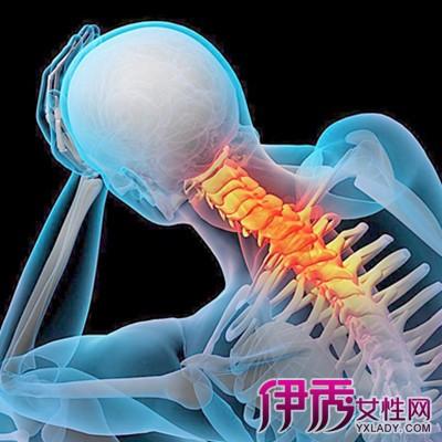 人体颈椎骨骼图片大全欣赏 阐述其对人体的7大作用