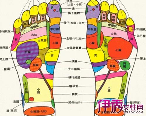 有時候前腳掌痛是什么原因 跖骨疼痛的處理與預防圖片