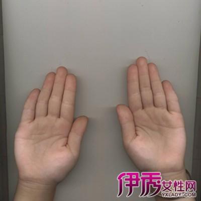 【手掌骨骼结构图】【图】手掌骨骼结构图大全