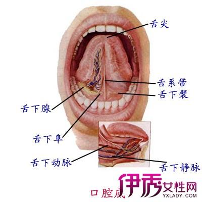 宝宝舌头上有溃疡怎么办