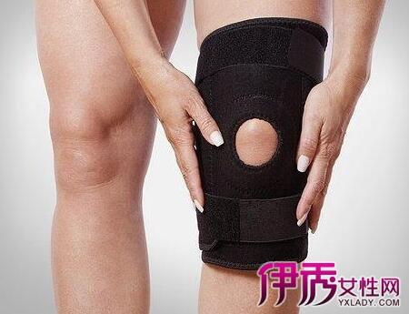 左膝盖结构图片大全