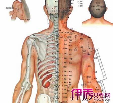 5的位置图片-足背部穴位图展示 四大穴位知识介绍