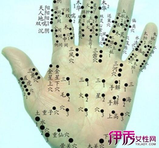 手指骨头示意图-右手掌骨骼结构图大全 有关手关节的小常识与你分享