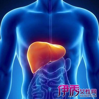 【图】治疗肝硬化的偏方有哪些 10大偏方帮你减轻病痛