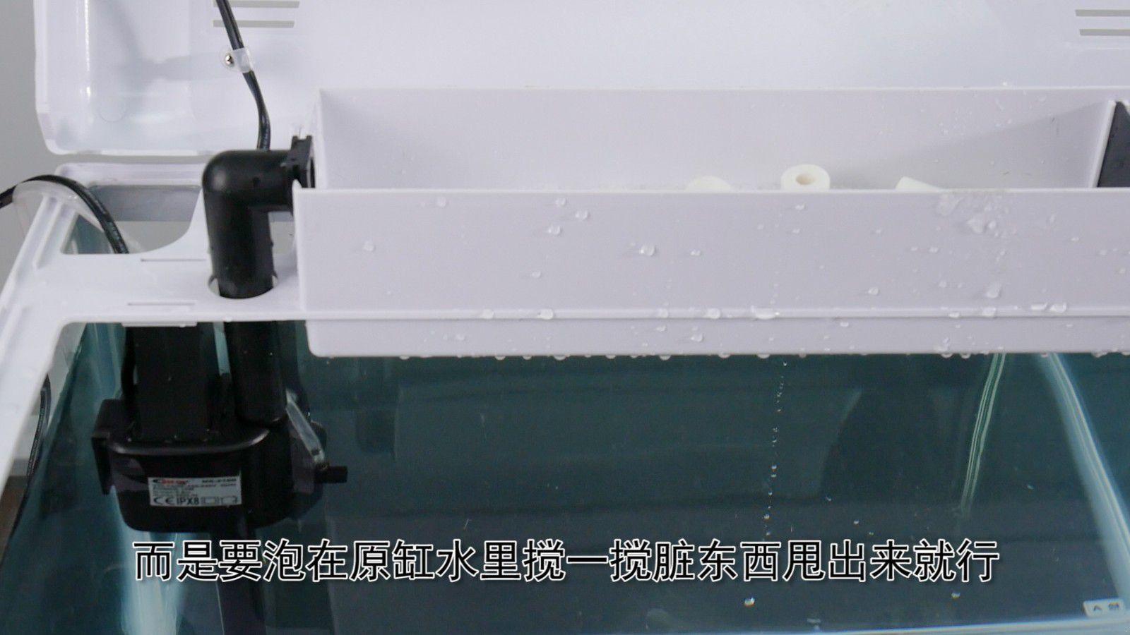 魚缸過濾棉怎么清洗 需要這樣清洗才干凈圖片