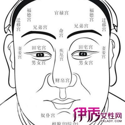 额头窄脸宽的面相图
